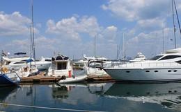 Nữ đại gia vừa trúng thầu đự án Cảng Du thuyền tại Mỹ Tho là ai?