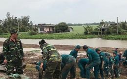 Hàng chục ngàn hộ dân nơm nớp lo vỡ đê, Cà Mau cần ban bố tình trạng khẩn cấp