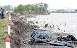 Ban bố tình huống khẩn cấp sạt lở đê biển Tây Cà Mau
