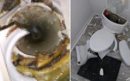 Sét đánh trúng bể phốt khiến nhà vệ sinh nổ tan tành