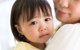 Cha mẹ thường xuyên làm việc này khi con còn nhỏ, chỉ đến năm 2 tuổi bé sẽ lãnh hậu quả