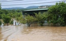 Sau Đắk Kar, Thủy điện Đắk Sin 1 gặp sự cố, đang bị cô lập