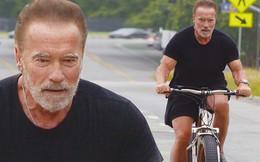 """Tài tử """"Kẻ hủy diệt"""" Arnold Schwarzenegger U80 cơ bắp cuồn cuộn"""