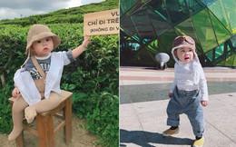 Check-in toàn những điểm 'hot' ở Đà Lạt nhưng biểu cảm ngơ ngác của em bé này mới chính là điều khiến dân mạng thích thú