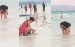Du khách Trung Quốc chôn tã xuống cát, Philippines phải đóng cửa bãi biển