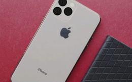 Một trong những thứ làm nên thương hiệu Apple sẽ biến mất hoàn toàn trên iPhone 11