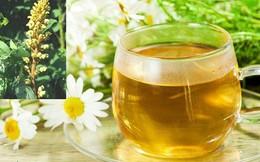 Các cách dùng trà chữa bệnh