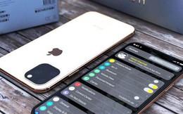5 lần iPhone 'chơi lớn' để ta giật mình chuếnh choáng: Khi tốt thì hay, khi lung lay thì... đành chịu