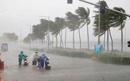 Có thể xuất hiện những cơn bão mạnh, quỹ đạo phức tạp