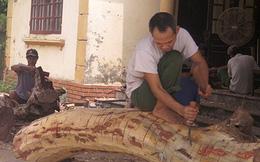 Hà Nội mở bán hồ sơ đấu giá lô gỗ sưa 'trăm tỷ'