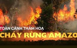 Toàn cảnh thảm hoạ cháy rừng Amazon khiến cả thế giới bàng hoàng
