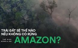 Cái kết của một hành tinh nếu rừng Amazon biến mất: Đừng nói cứu thế giới, bạn đang tự cứu chính mình mà thôi!