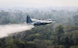 Tận mắt xem vận tải cơ Brazil phun nước dập lửa cứu rừng Amazon