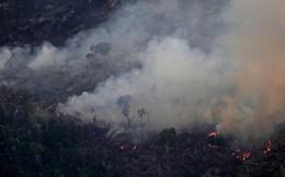 CNN cập nhật tình hình chữa cháy rừng Amazon: 'Phía dưới máy bay là nghĩa địa vì chúng tôi chỉ thấy cái chết'