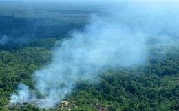 Cuộc chiến thương mại và cháy rừng Amazon: Tưởng chừng không liên quan nhưng sự thật đằng sau lại gây bất ngờ!