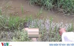 Phát hiện thi thể người đàn ông dưới ruộng lúa