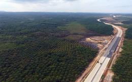 Giới đầu cơ bất động sản đổ xô tới thủ đô mới của Indonesia mua đất