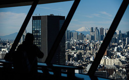 Các công ty Nhật Bản đang ngồi trên núi tiền mặt trị giá 4,8 nghìn tỷ USD
