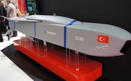 Thổ Nhĩ Kỳ thử nghiệm thành công tên lửa hành trình xuyên phá boong-ke bê tông