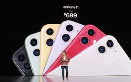 """iPhone 11 vừa ra mắt, hội chị em tấm tắc khen màu sắc """"chuẩn bánh bèo"""" nhưng cụm camera lại là một trò đùa hài hước"""