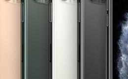Nhà bán lẻ 'rục rịch' cho khách hàng đặt hàng iPhone 11