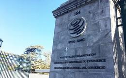 Nga giành thắng lợi trong tranh chấp thuế quan với Ukraine tại WTO