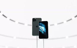 """Chữ """"Pro"""" như trong iPhone 11 Pro thực sự có ý nghĩa như thế nào?"""