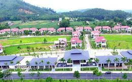 'Ông lớn' BĐS Hà Nội mang biệt thự, villas, căn hộ siêu sang đi 'cắm' ngân hàng