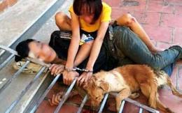 """Bắt 10 """"cẩu tặc"""" trộm hơn 40 con chó trong 1 đêm"""