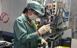 3 công ty Nhật bị hủy bỏ kế hoạch thực tập sinh Việt Nam