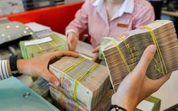 Tiền có dấu hiệu thừa, Ngân hàng Nhà nước chào thầu tín phiếu trở lại