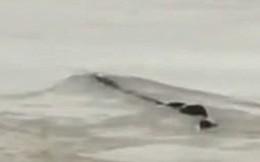Cảnh sát phơi bày sự thật về 'quái vật hồ Loch Ness' phiên bản Trung Quốc từng khiến bao người khiếp sợ