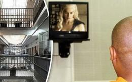 Quyết vào tù để được xem truyền hình miễn phí, tên trộm cố tình lưu lại dấu vết vì muốn cảnh sát tới bắt