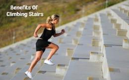 7 thói quen đơn giản hằng ngày giúp giảm cân diệu kỳ