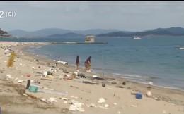 Hàn Quốc xả 6 tấn rác ra biển trong ngày 'Làm sạch bờ biển' để người yêu môi trường có cái mà nhặt