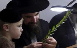 8 định luật thành công của người Do Thái: Người có tư duy sẽ hoan hỉ áp dụng, kẻ lười biếng chắc chắn tỉnh ngộ!