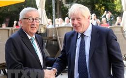 Vấn đề Brexit: Nước cờ quyết định hay 'kế hoạch đổ vỏ' của nước Anh?