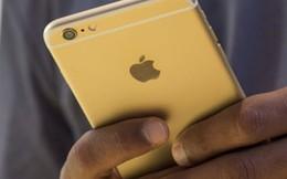Người dùng iPhone 6s và 6s Plus nhất định phải biết điều này kiểu thiệt thân