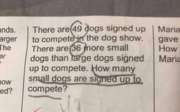 Bài tập về nhà của học sinh lớp 2 với đáp án kỳ quặc gây tranh cãi