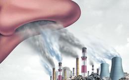 Hơn 4 triệu người chết vì ô nhiễm không khí mỗi năm: Mối đe dọa không của riêng ai