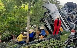 Người dân giúp tài xế nhặt hàng tấn trái cây rơi sau tai nạn
