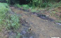 Ảnh: Cận cảnh con suối đen sì gần nhà máy nước sạch sông Đà bị 'đầu độc' bởi dầu thải