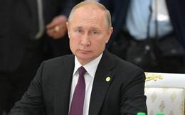Ông Putin thừa nhận không đọc những dòng Twitter của ông Trump