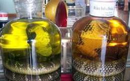 Rượu rắn có giúp tăng cường sinh lý?