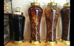 4 loại rượu thuốc chữa yếu sinh lý hiệu quả