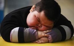 Báo động: 600 triệu người lớn và 120 triệu trẻ em độ tuổi 5-19 trong tình trạng béo phì