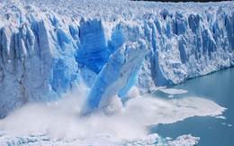 Thảm họa thế nào nếu toàn bộ băng trên Trái đất tan hết