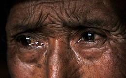 """Về thăm cha già hấp hối, con trai hỏi """"sao chưa chịu chết đi?"""" khiến ông uống thuốc sâu tự tử"""