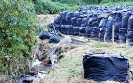 Siêu bão Hagibis không gây thiệt hại nhiều về người nhưng lại cuốn trôi ra sông nhiều túi chứa chất thải phóng xạ, đe dọa tính mạng dân Nhật