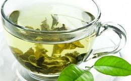 """Nước trà xanh - """"sát thủ"""" của dầu mỡ"""